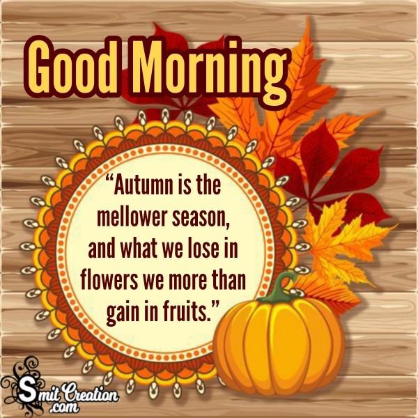 Good Morning Autumn Mellower Season