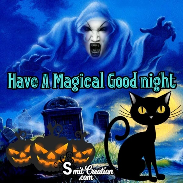 Have A Magical Good Night