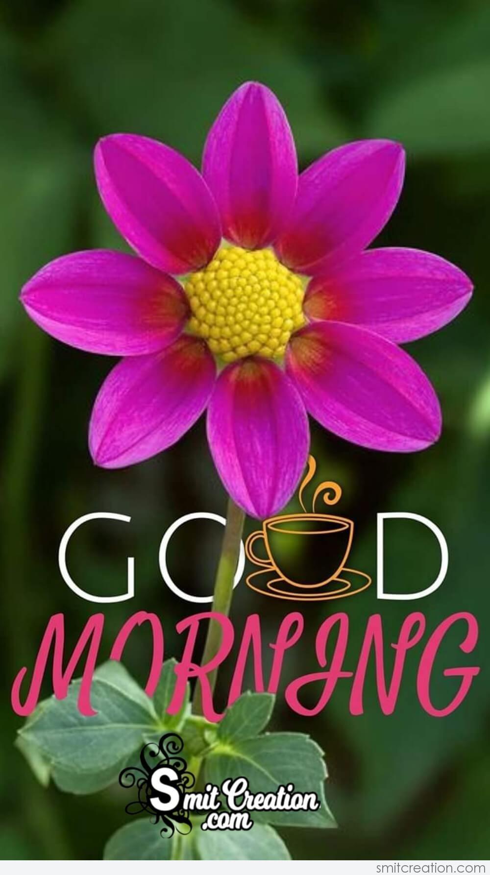Good Morning Sweet Flower Smitcreation Com
