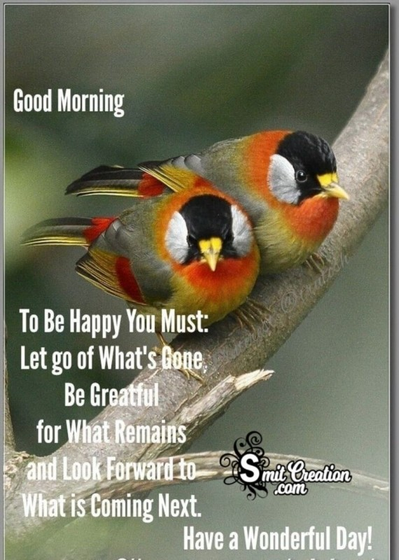 Good Morning Be Grateful