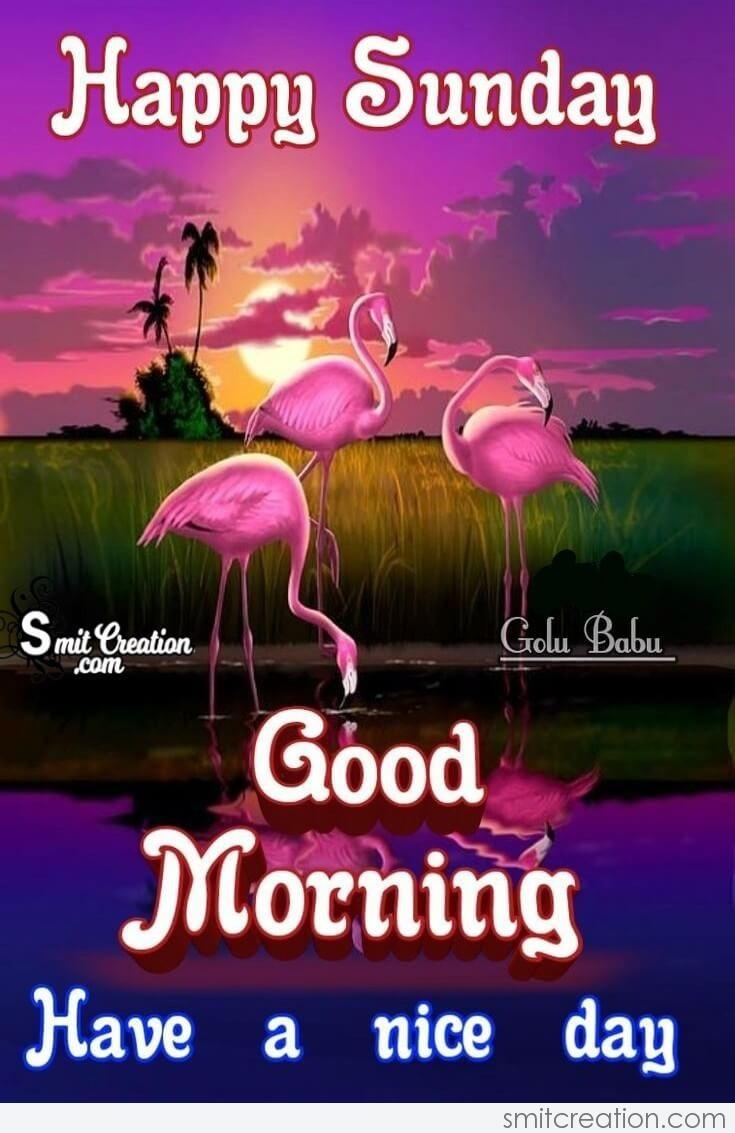 Happy Sunday Good Morning Nice Day Smitcreation Com