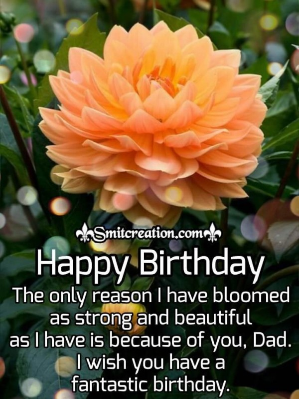Happy Birthday Fantastic Wishes for Father