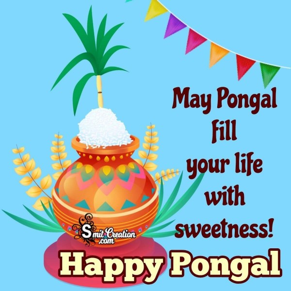 Happy Pongal Sweet Wishes