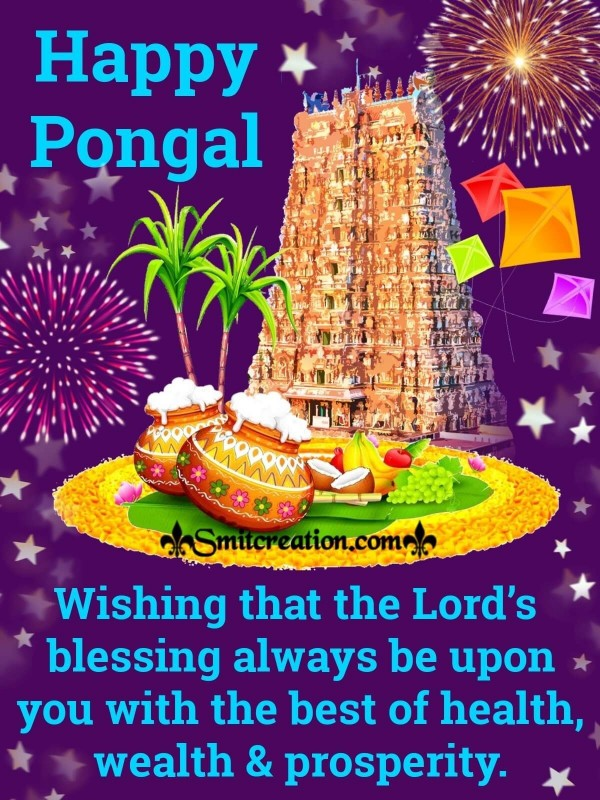 Happy Pongal Wishes Greeting Card
