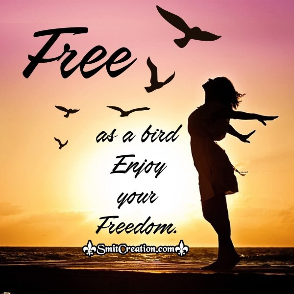 Free as a bird Enjoy your Freedom.