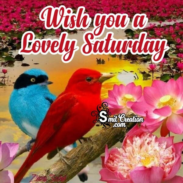 Wish You A Lovely Saturday