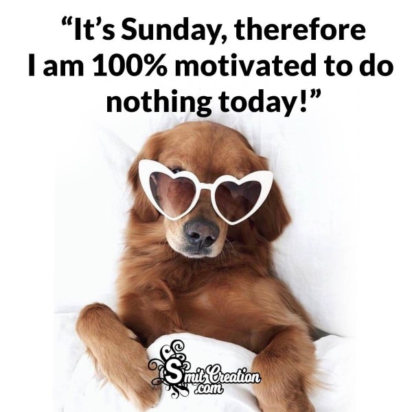 It's Sunday, Therefore I Am 100% Motivated