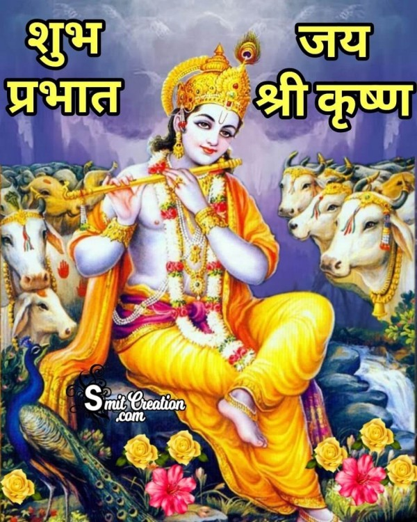 Shubh Prabhat Krishna With Cows