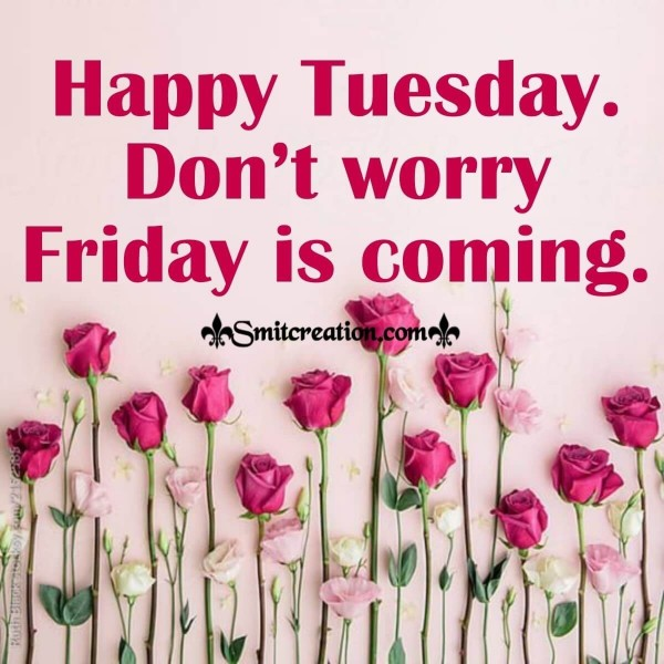 Happy Tuesday Don't Worry Friday Is Coming