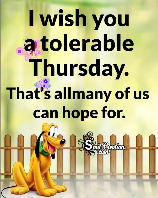 Wish You A Tolerable Thursday
