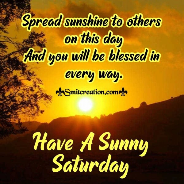 Have A Sunny Saturday
