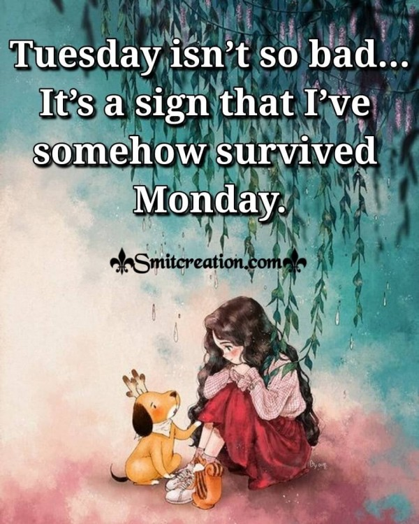 Tuesday Is A Sign That I've Survived Monday