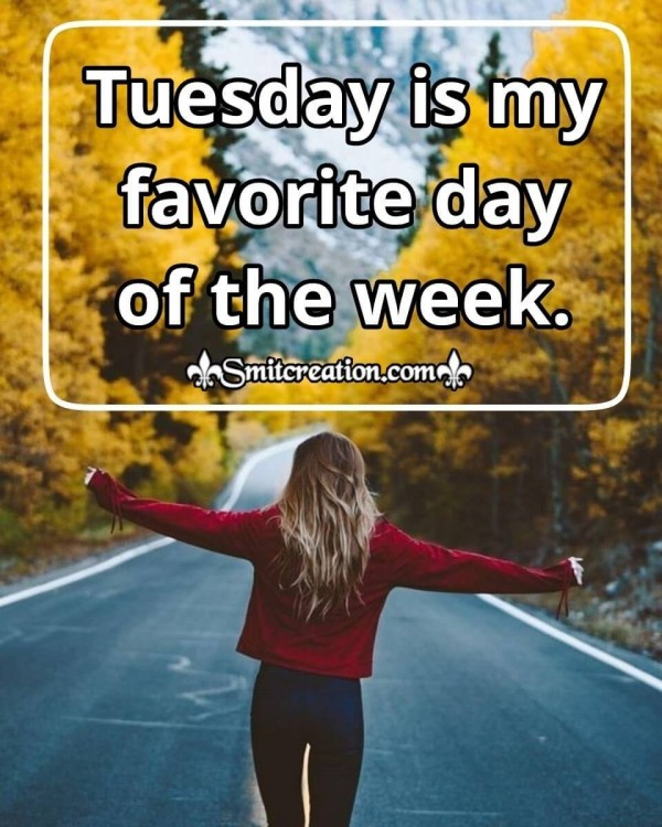 Tuesday Is My Favorite Day Of The Week