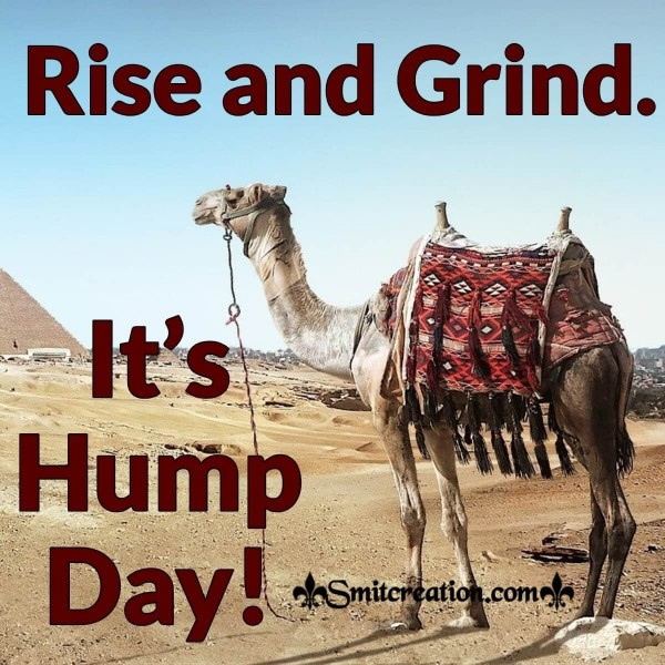 Rise And Grind It's Hump Day!