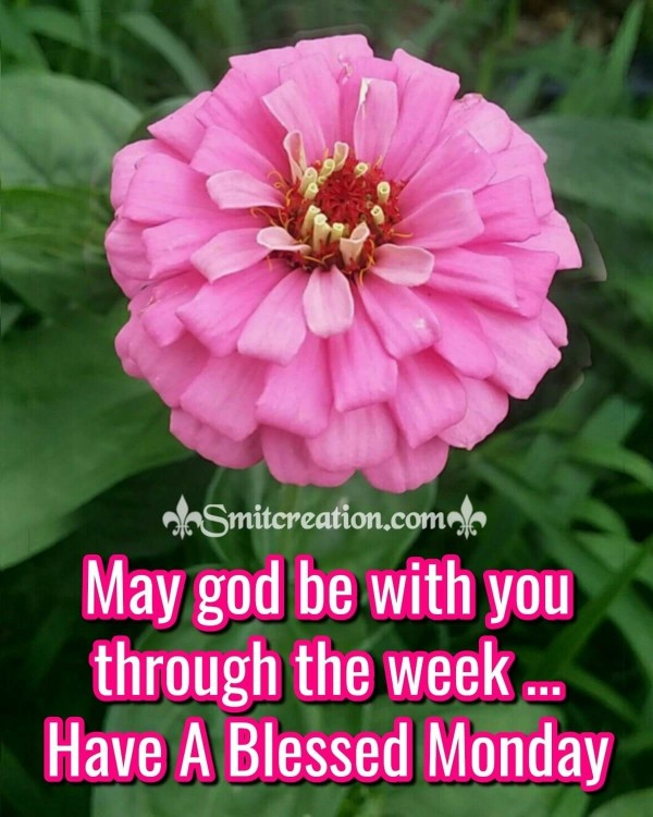 Have A Blessed Monday