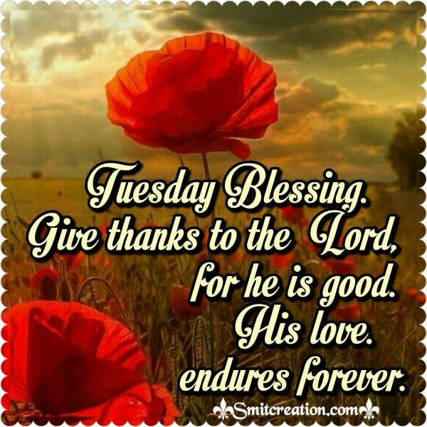 Tuesday Blessings – Give Thanks To The Lord