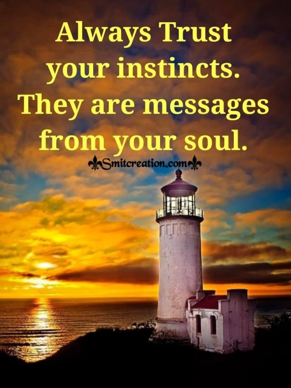 Always Trust Your Instincts They Are Messages From Your Soul