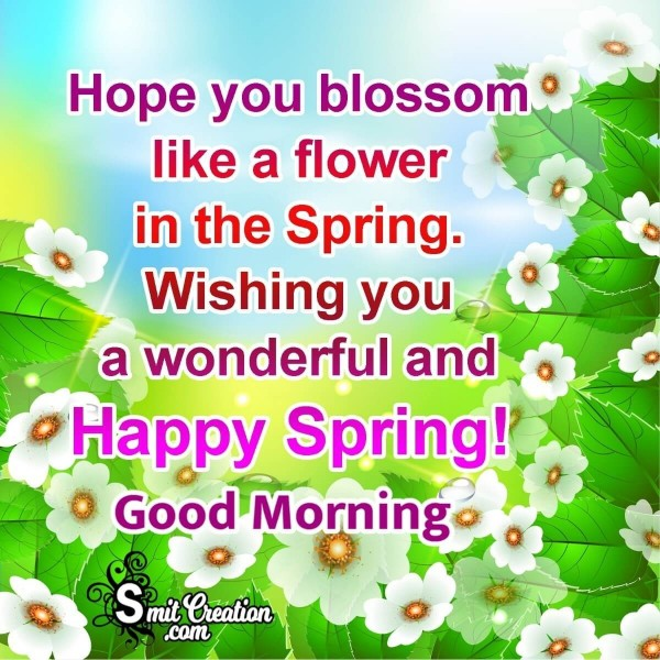 Happy Spring Good Morning