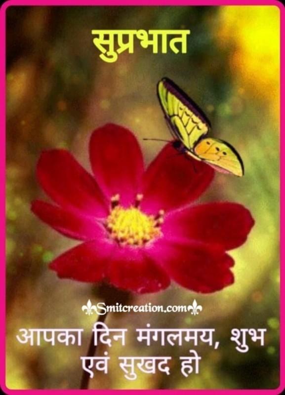 Suprabhat Beautiful Flower
