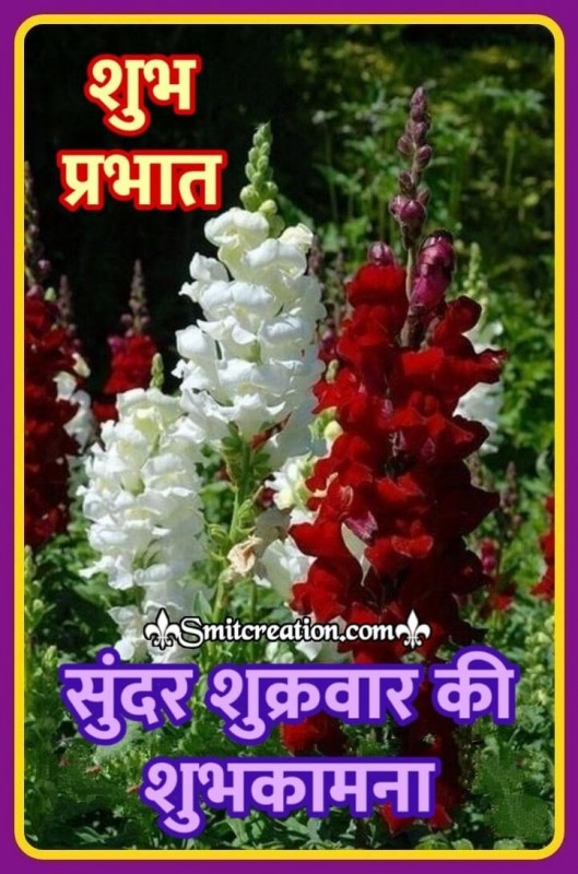 Shubh Prabhat Sundar Shukravar Ki Shubhkamnaye