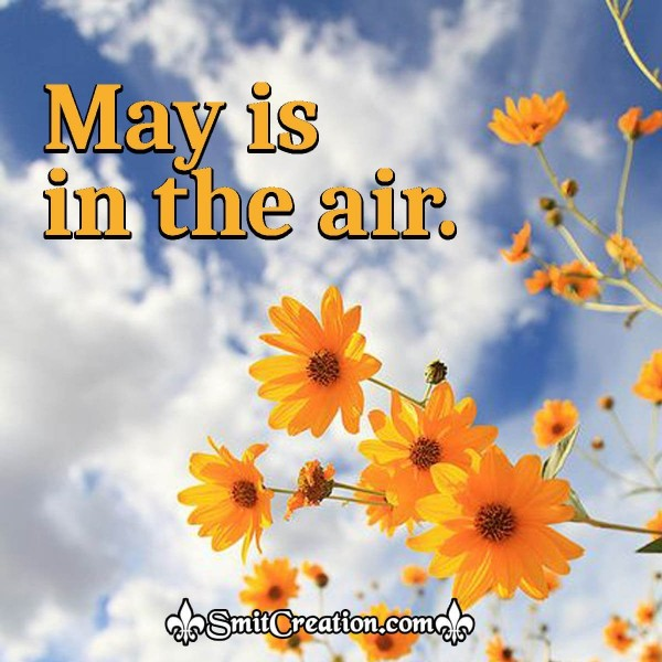 May Is In The Air