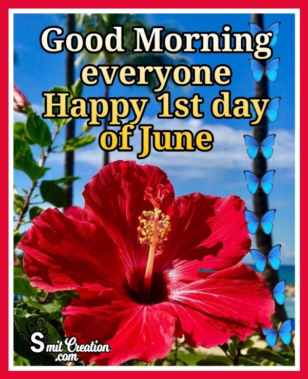 Good Morning Everyone Happy 1st day of June