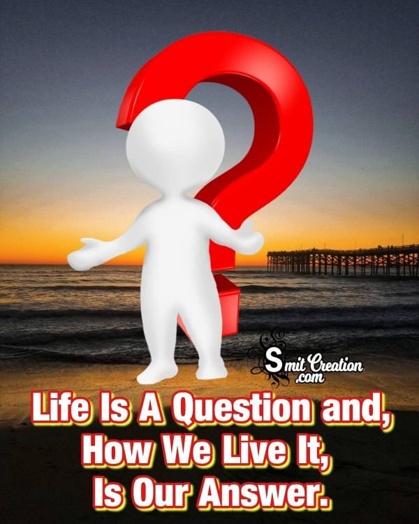 Life Is A Question