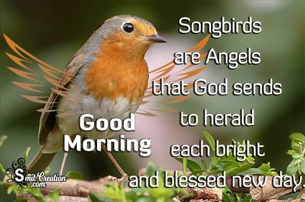 Good Morning Songbirds Are Angel