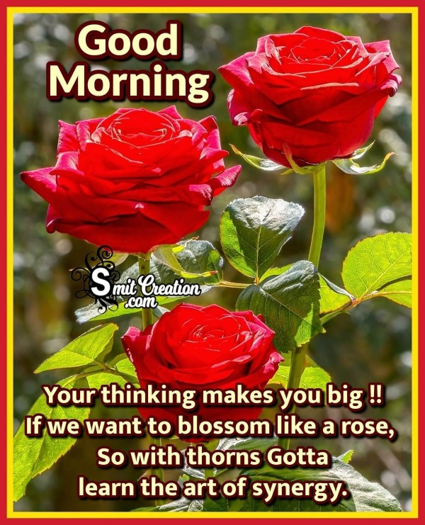 Good Morning Quote Message With Rose
