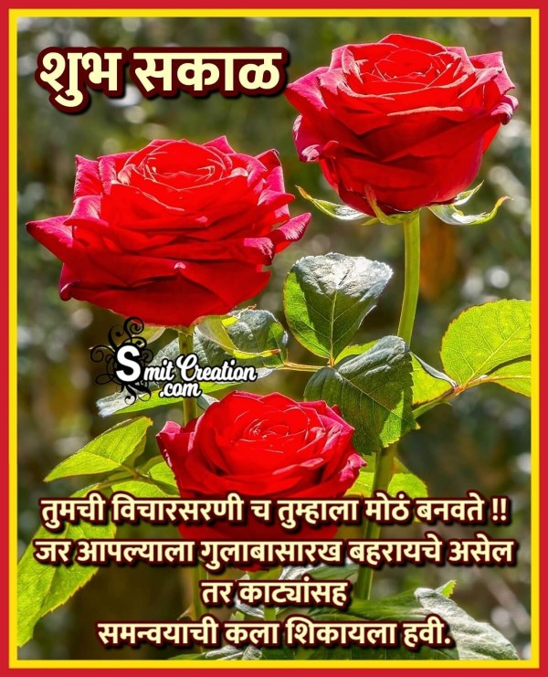Shubh Sakal Suvichar Message With Rose