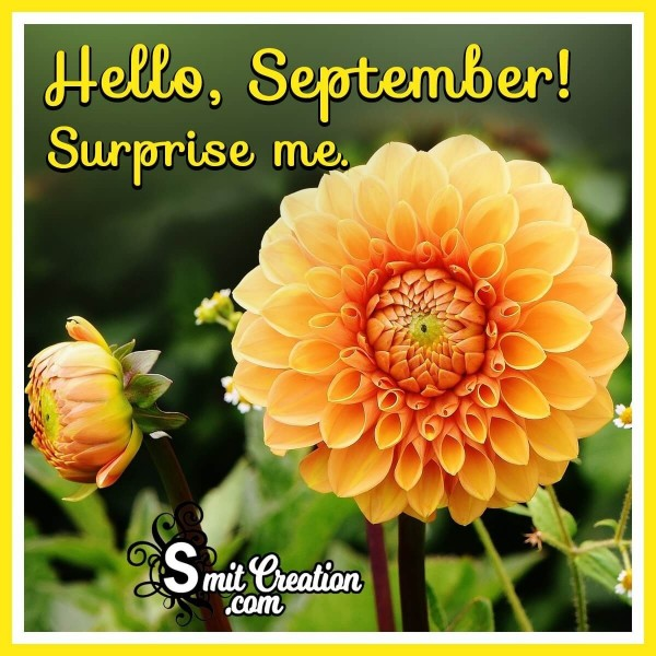 Hello, September! Surprise Me