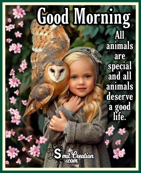 Good Morning Animal Are Special