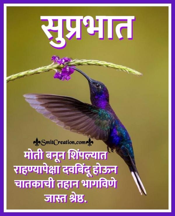 Best Suprabhat Marathi Suvichar