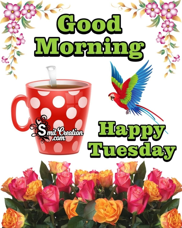 Good Morning Happy Tuesday Image