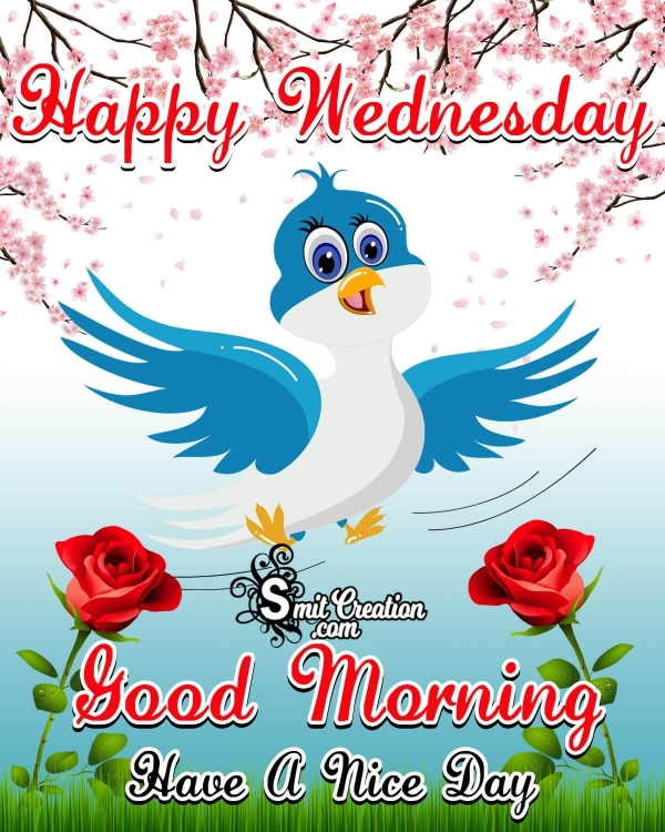 Happy Wednesday Good Morning