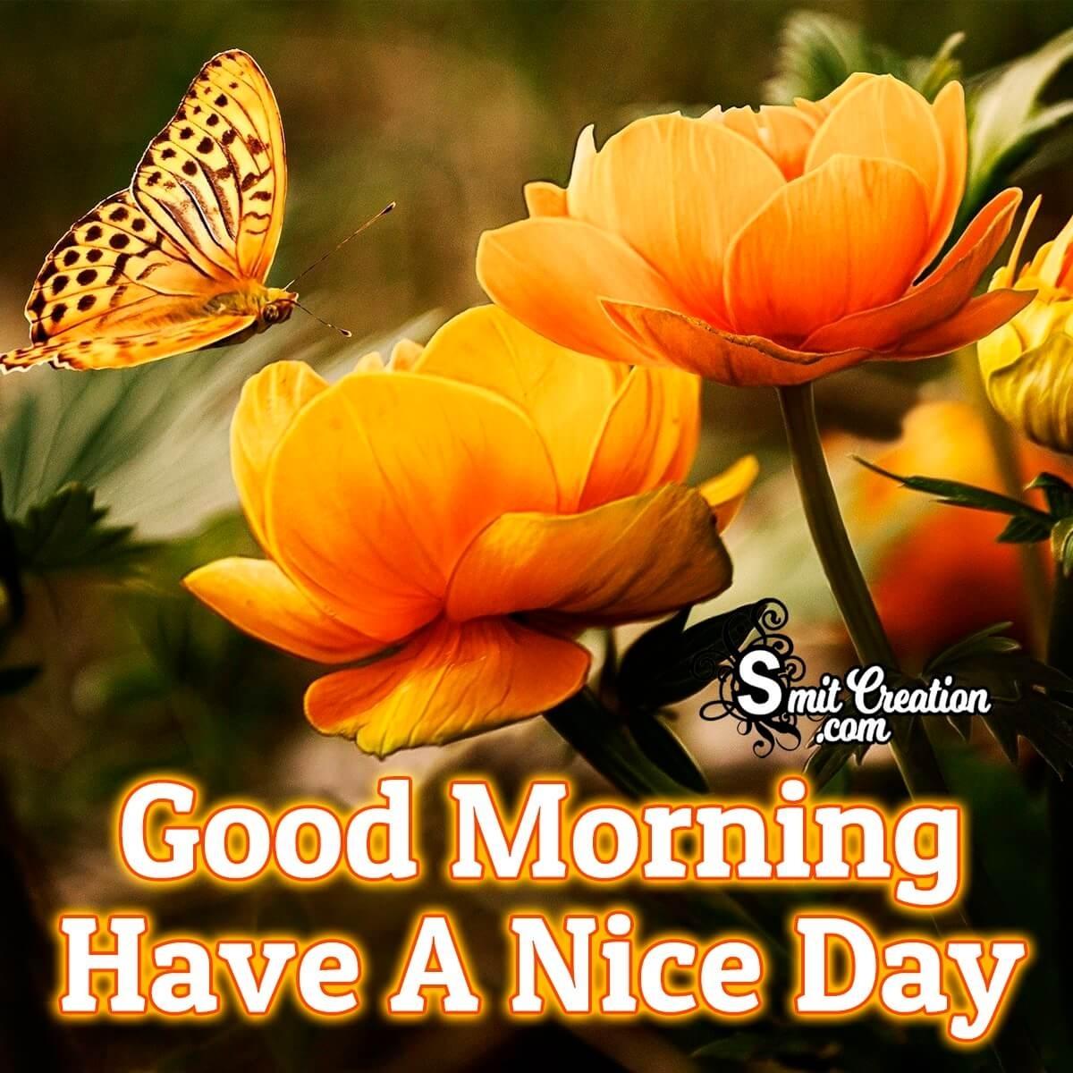 Good Morning Flowers Images Smitcreation Com