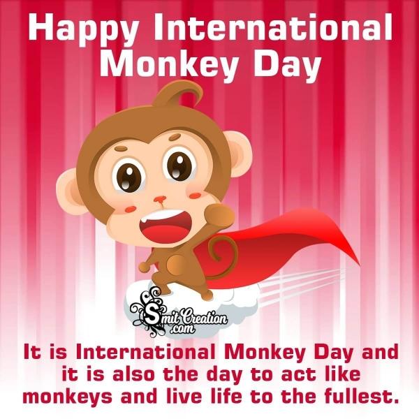 Happy International Monkey Day