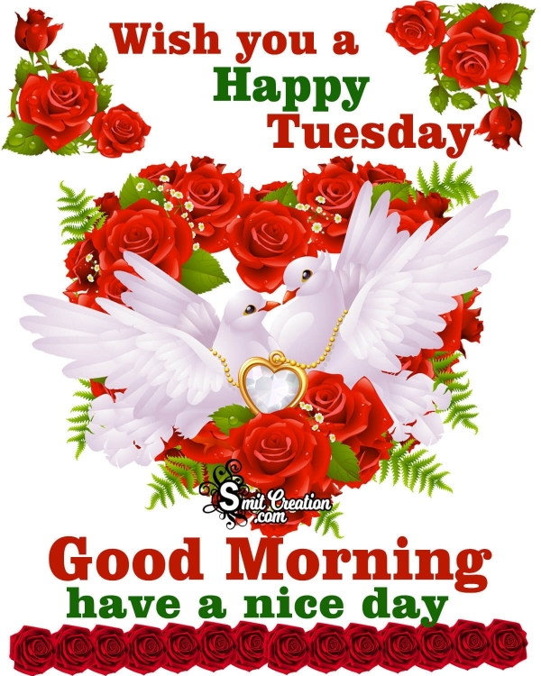 Wish You A Happy Tuesday Good Morning