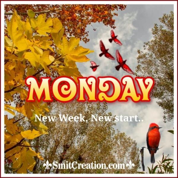 Monday New Week New Start