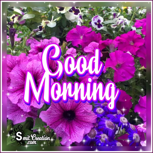 Good Morning Purple Flowers