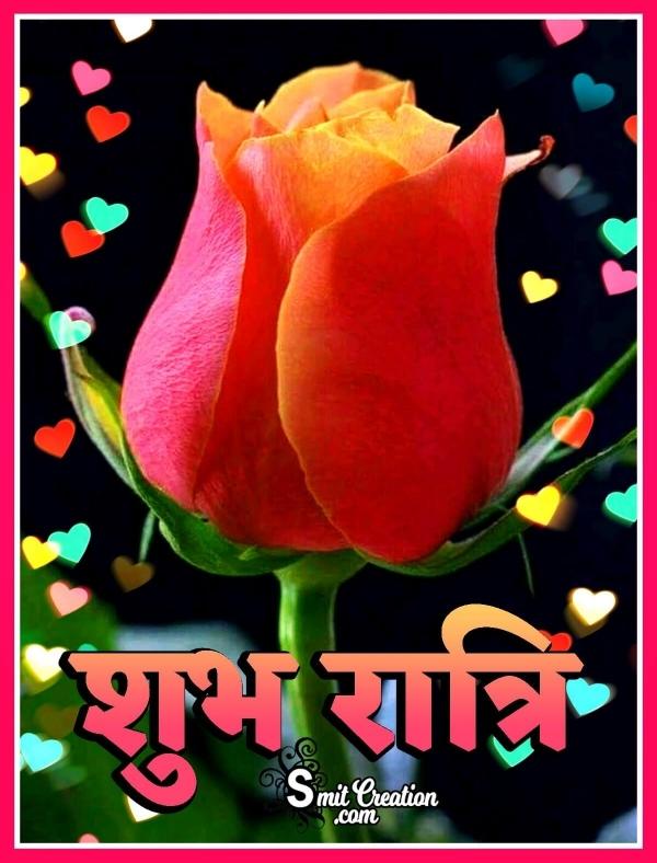 Shubh Ratri Rose Flower