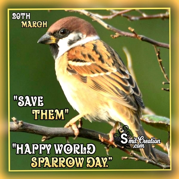 20 March Happy World Sparrow Day