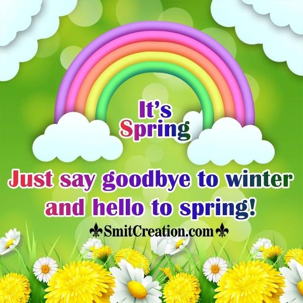 Goodbye Winter Hello Spring!