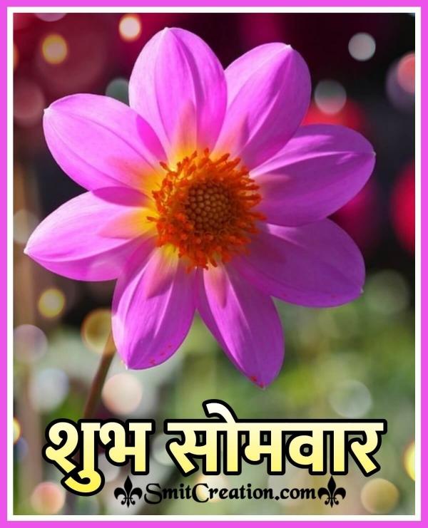 Shubh Somvar Flower Image