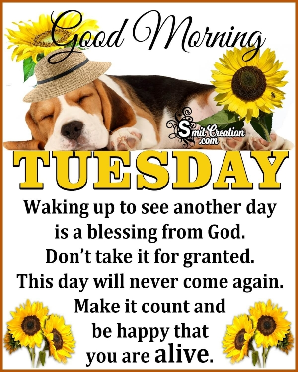 Good Morning Tuesday Blessing Quote