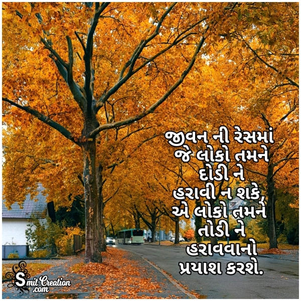 Gujarati Life Quote