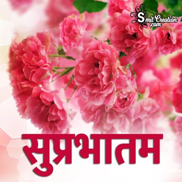 Suprabhatam Hindi Images ( सुप्रभातम हिंदी इमेजेस )