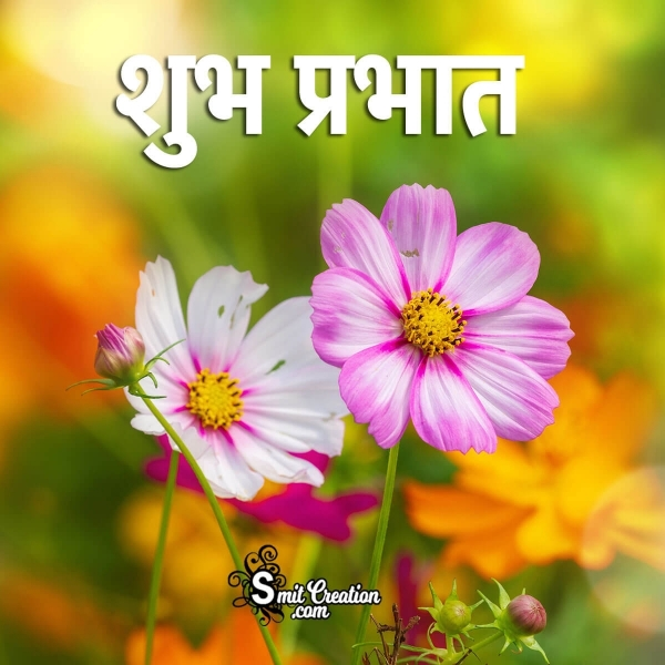 Shubh Prabhat Flower Images And Quotes