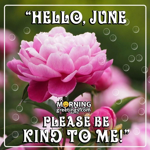 Hello June, Be Kind To me
