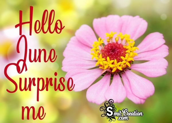 Hello June Surprise Me